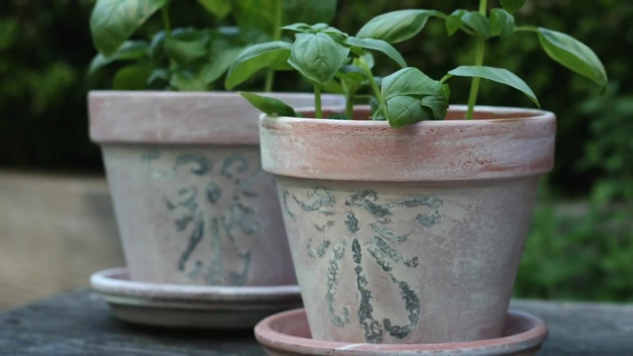DIY Distressed Herb Planters