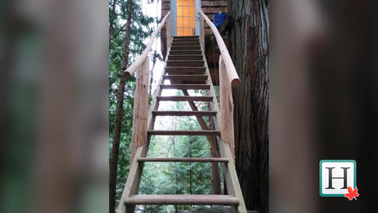 Pender Island Treehouse Home Is A Lesson In Stability