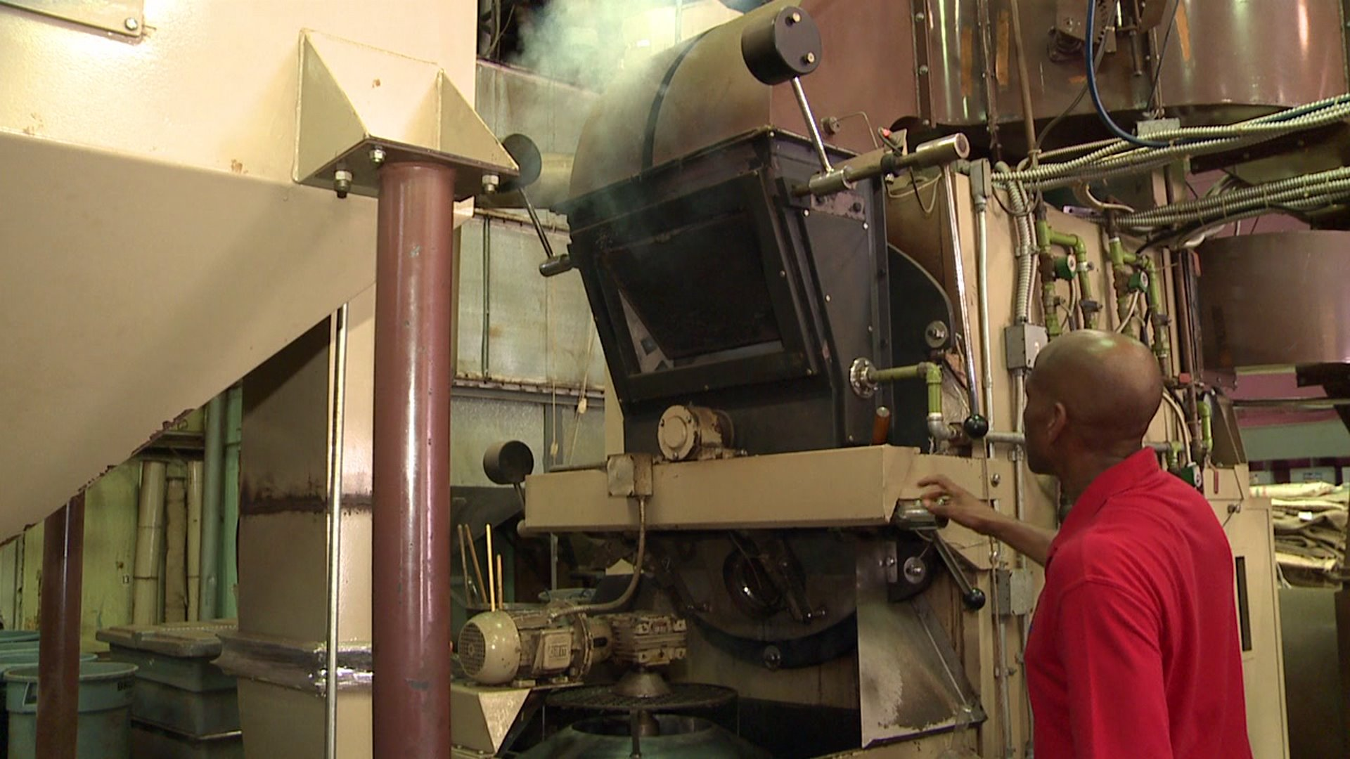 Behind the Scenes of a Coffee Roasting Factory