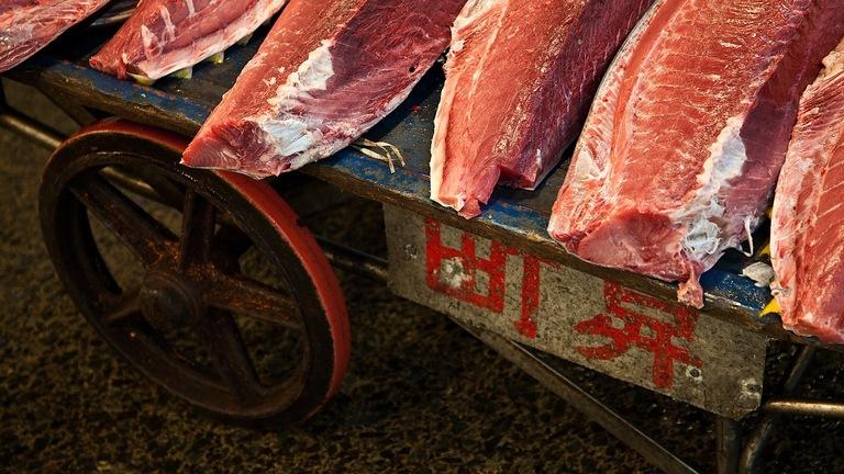 Fatty Tuna Vs. Regular Tuna Sushi Rolls