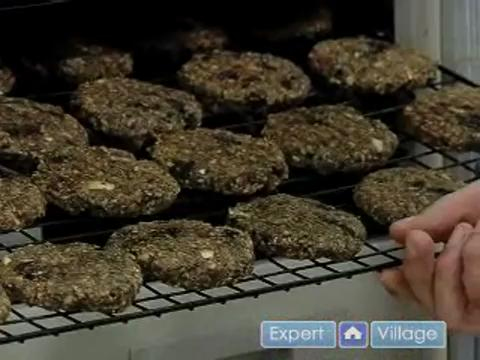 The Raw Food Burger Dryer