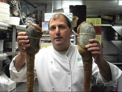 How to Use the Geoduck