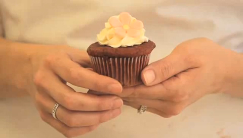 Basic Substitutions for Vegan Cupcakes