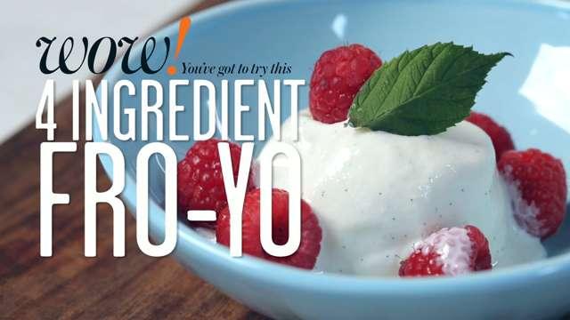 4 Ingredient Frozen Yogurt Recipe