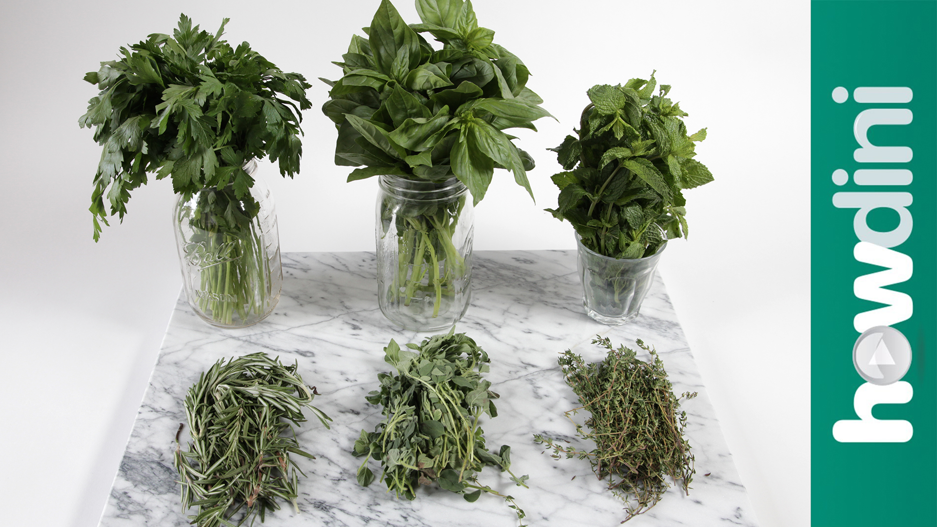 How to Dry Fresh Herbs in the Microwave