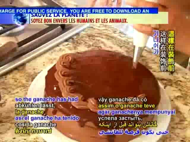 Triple Layer Vegan Chocolate Cake Recipe