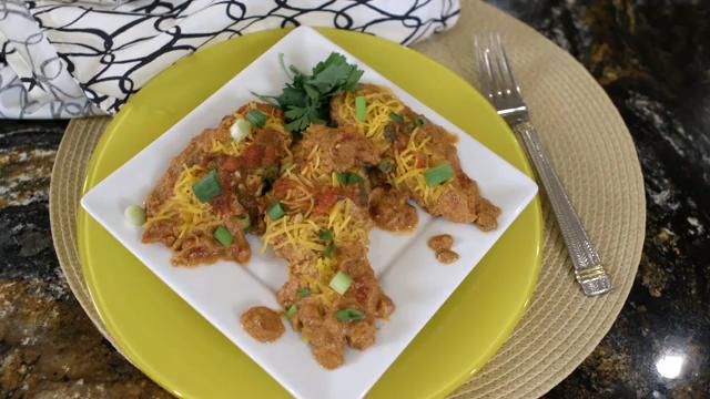 Rush Hour Recipes: Southwest Style Salsa Chicken Recipe