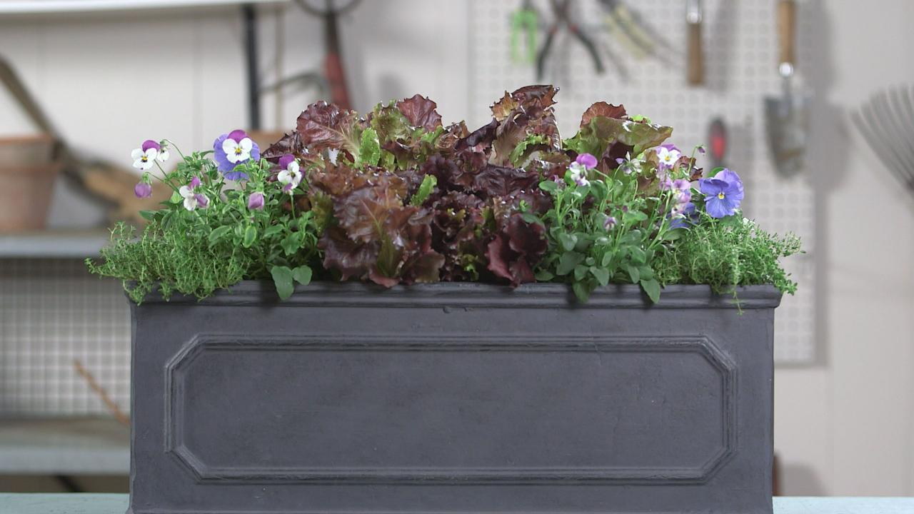 How to Make a Vegetable Container