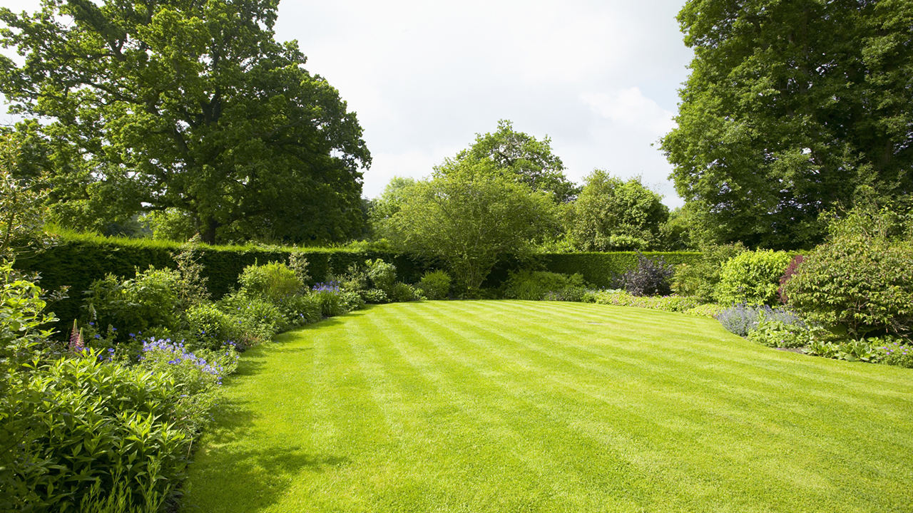 9 Mowing Tips for the Best Lawn on the Block