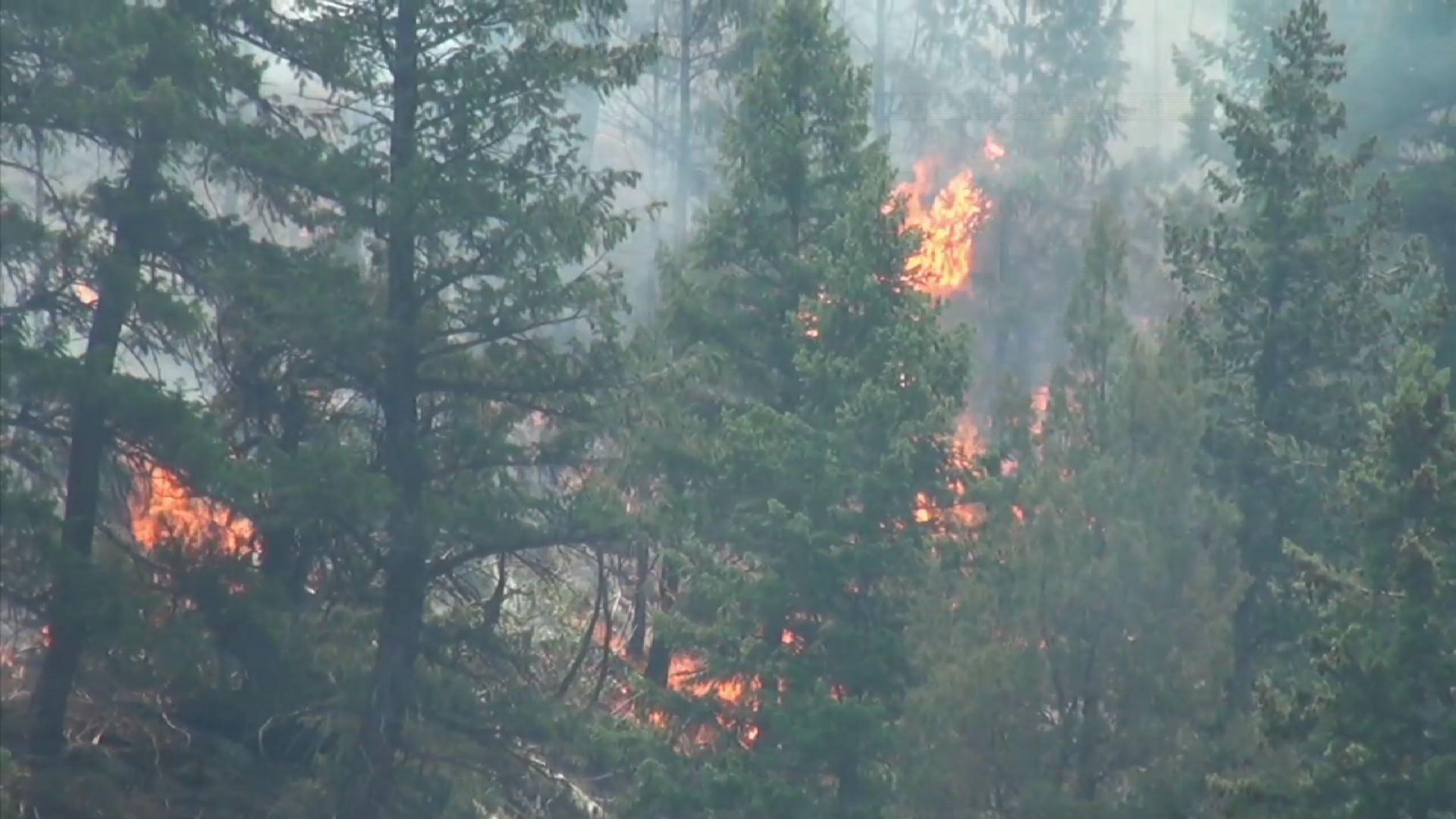2016 Wildfire Season Expected to Be Less Severe