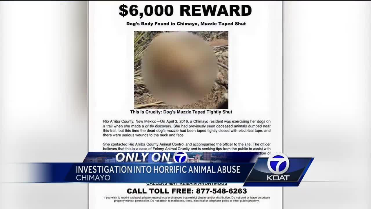 Group offering $6,000 reward for alleged animal cruelty