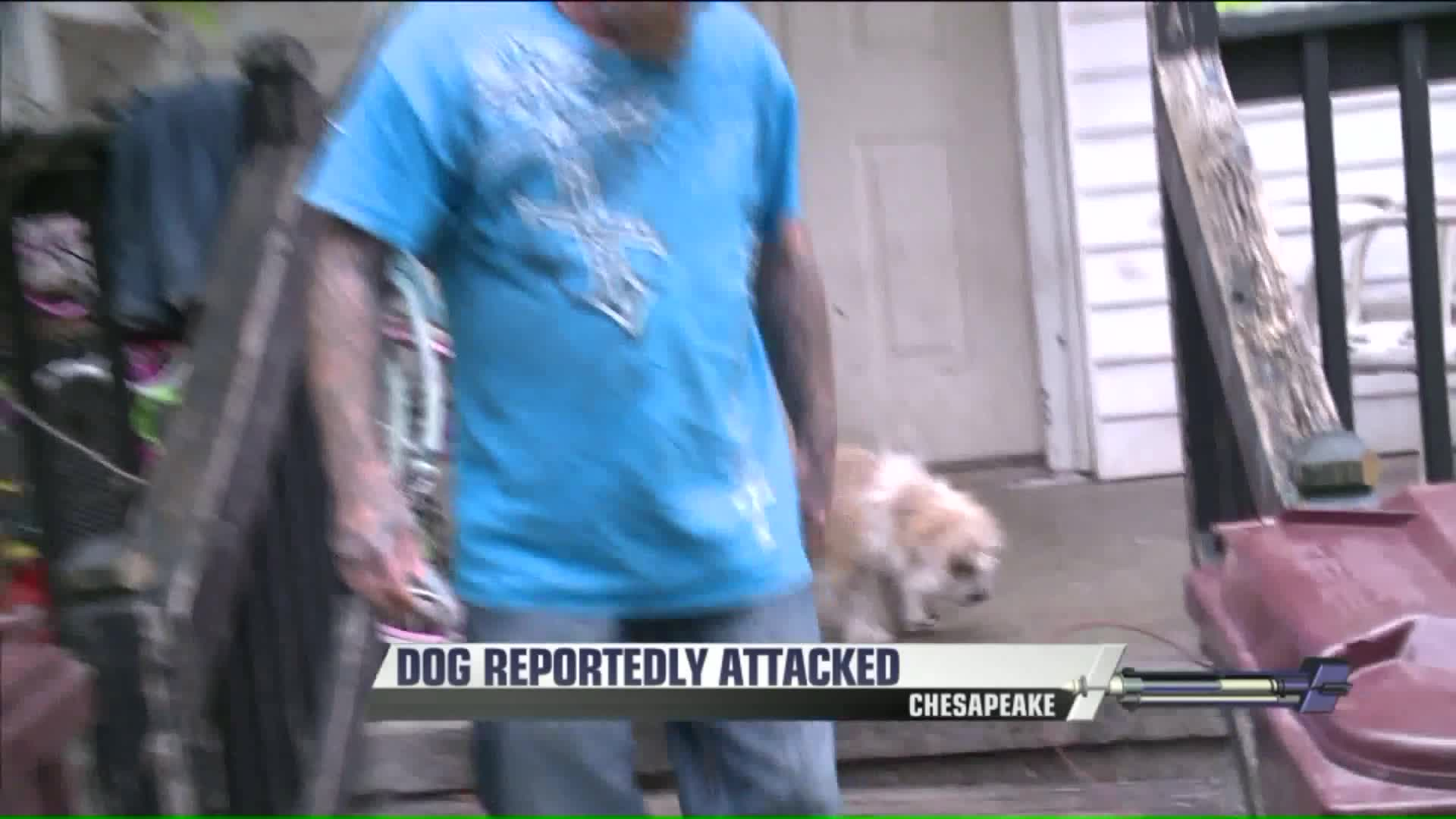 Man Claims City Workers Beat His Dog