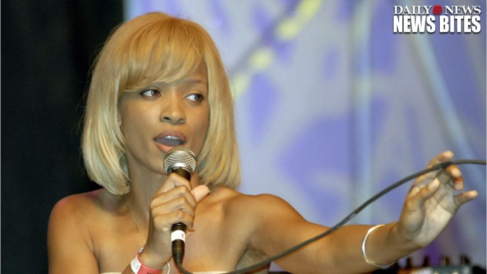Karrine Steffans Claims She Was One Of Jay Z's Former 'Beckys'
