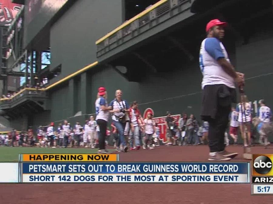 'Bark in the Park' at Chase Field tries to set world record