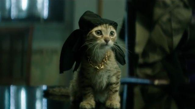 Box Office Top 3: 'Keanu' Isn't Quite Adorable Enough to Take No. 1