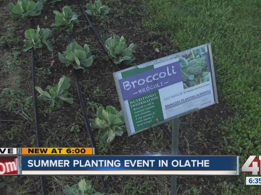 WIC Community Garden: Volunteers needed to help plant vegetables