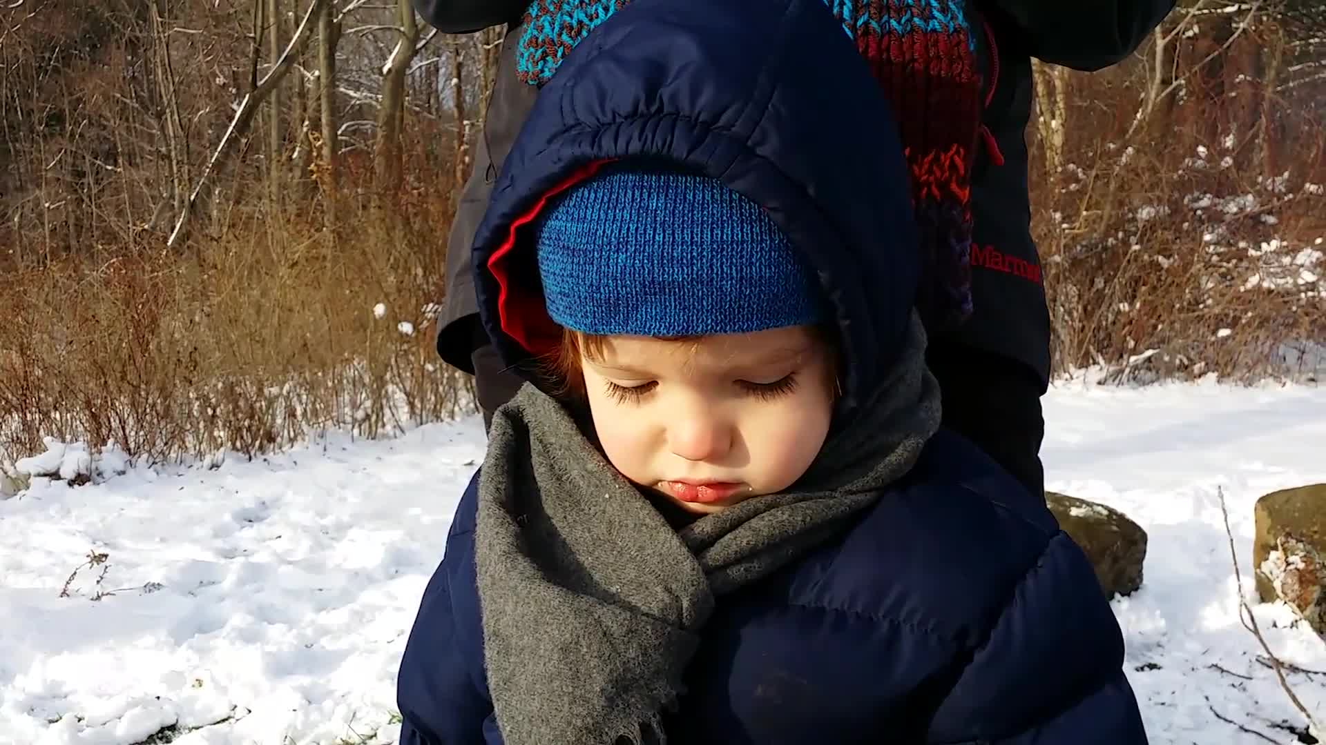 Baby Can't Make Up His Mind About Sledding