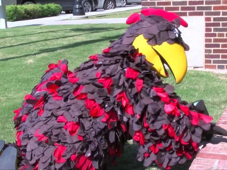 Broken Arrow Rooster looks for $1,000.00 Egg