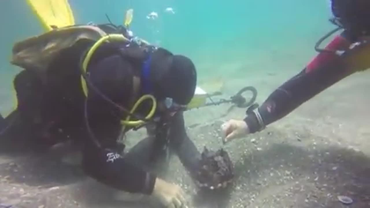 Divers Find Ancient Cargo From 1,600-Year Old Shipwreck In Israel