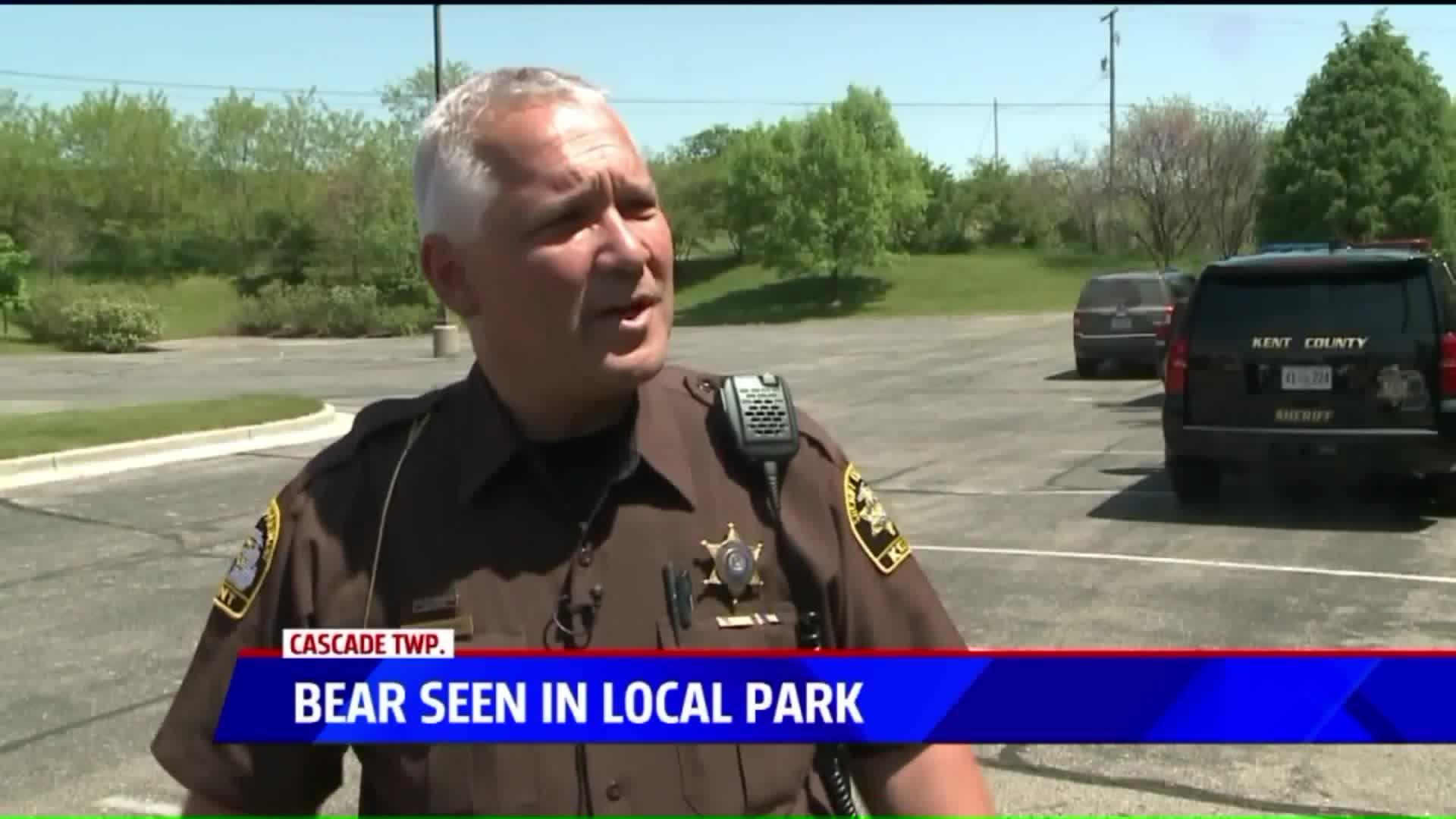 Bear Crashes TV Reporter's Live Shot