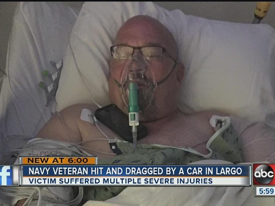 US Navy veteran hit and run