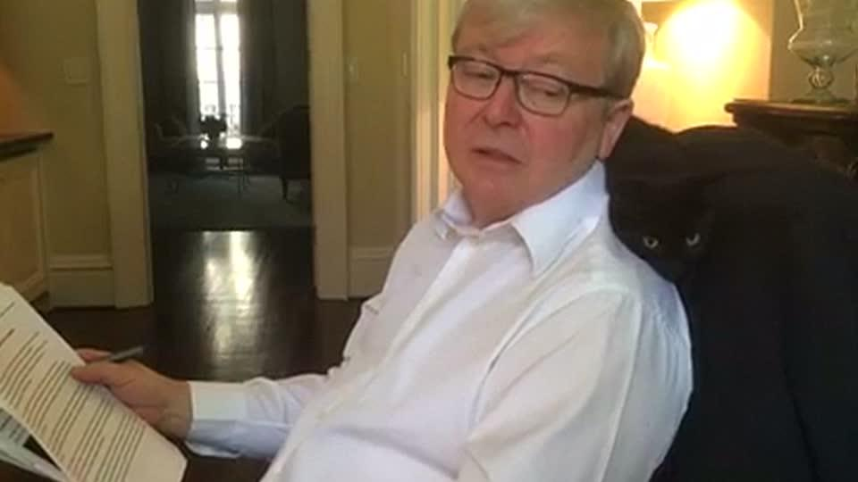 Former Australian PM Rudd poses with his cat in video