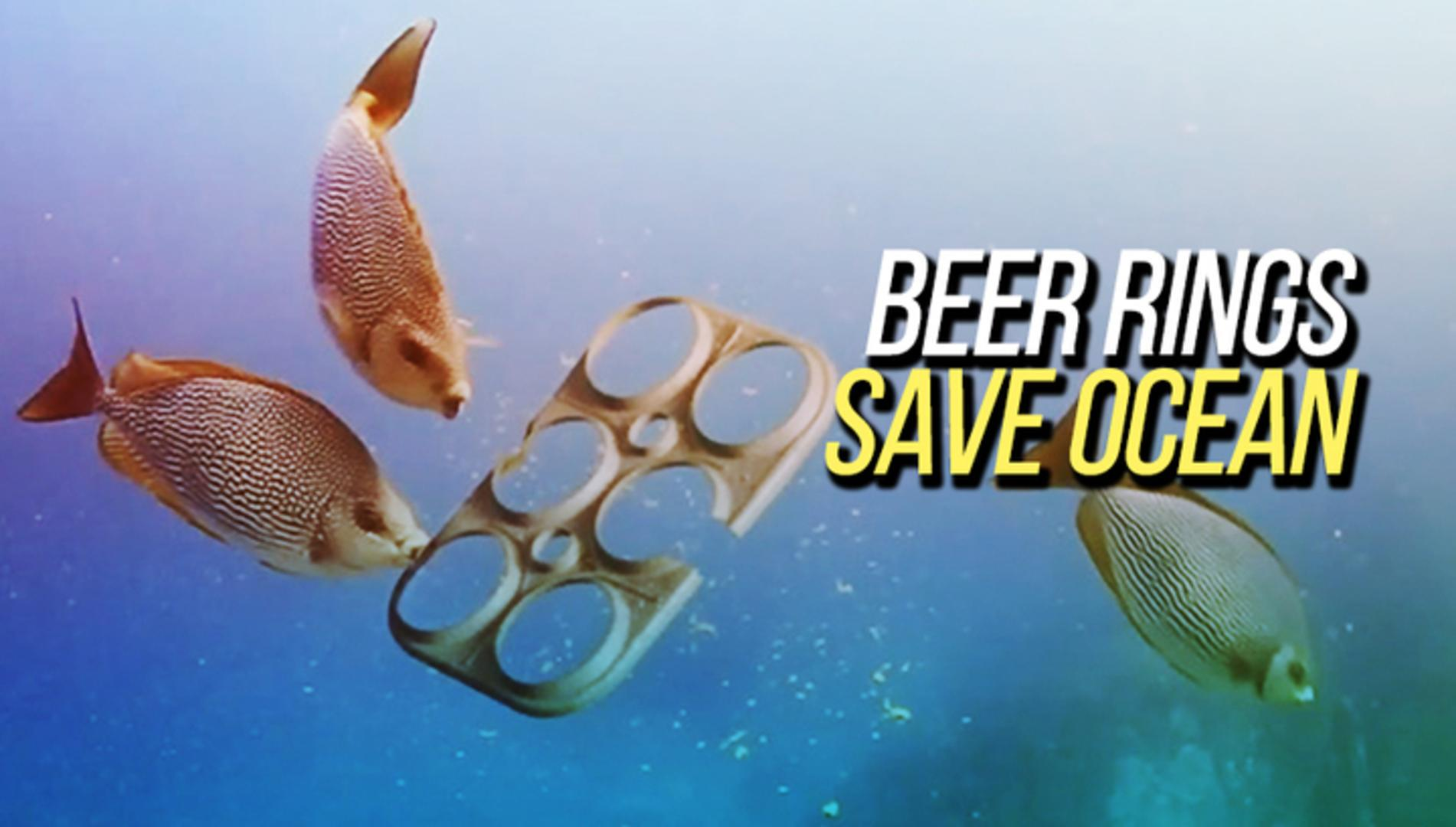 Biodegradable Beer Rings Save Ocean