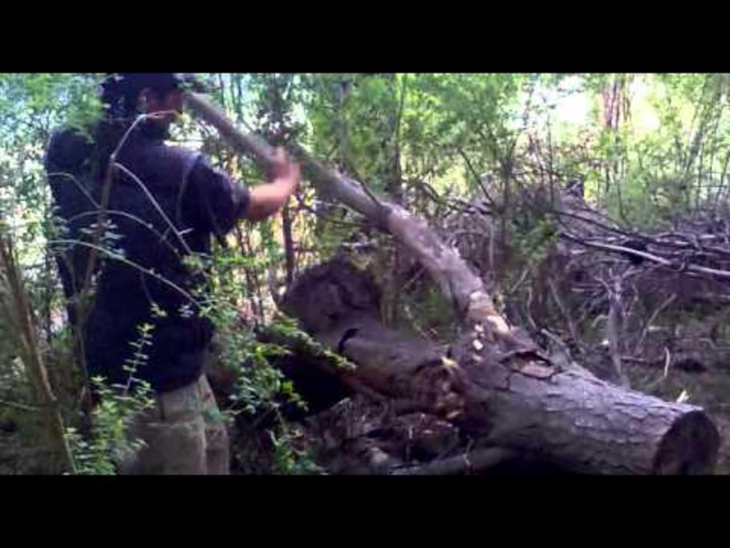 Guy Runs into Forest after Falling off Tree