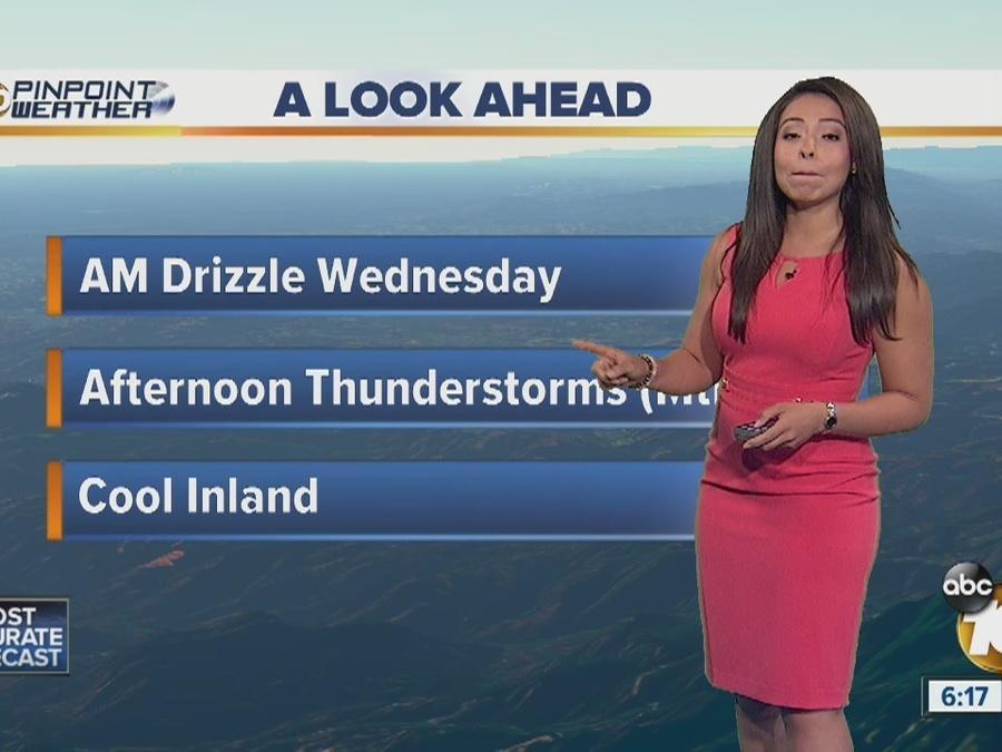 Angelica's Forecast