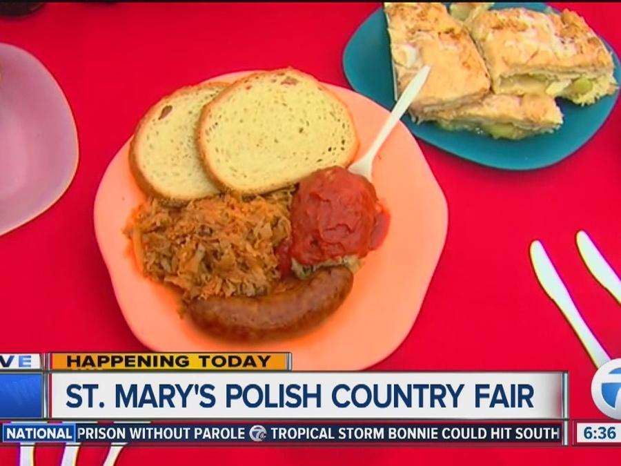 Food & drink at St. Mary's Polish Country Fair