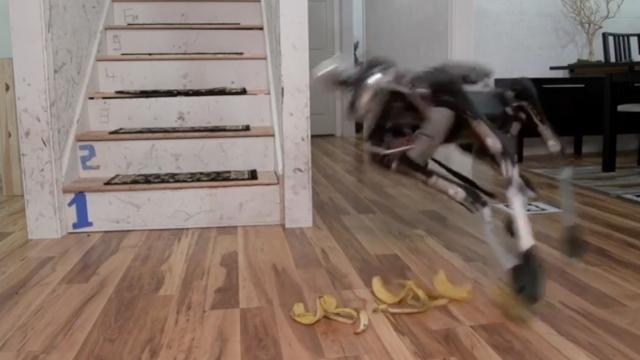 We Can't Defeat the Robots; We Can Only Slow Them With Banana Peels