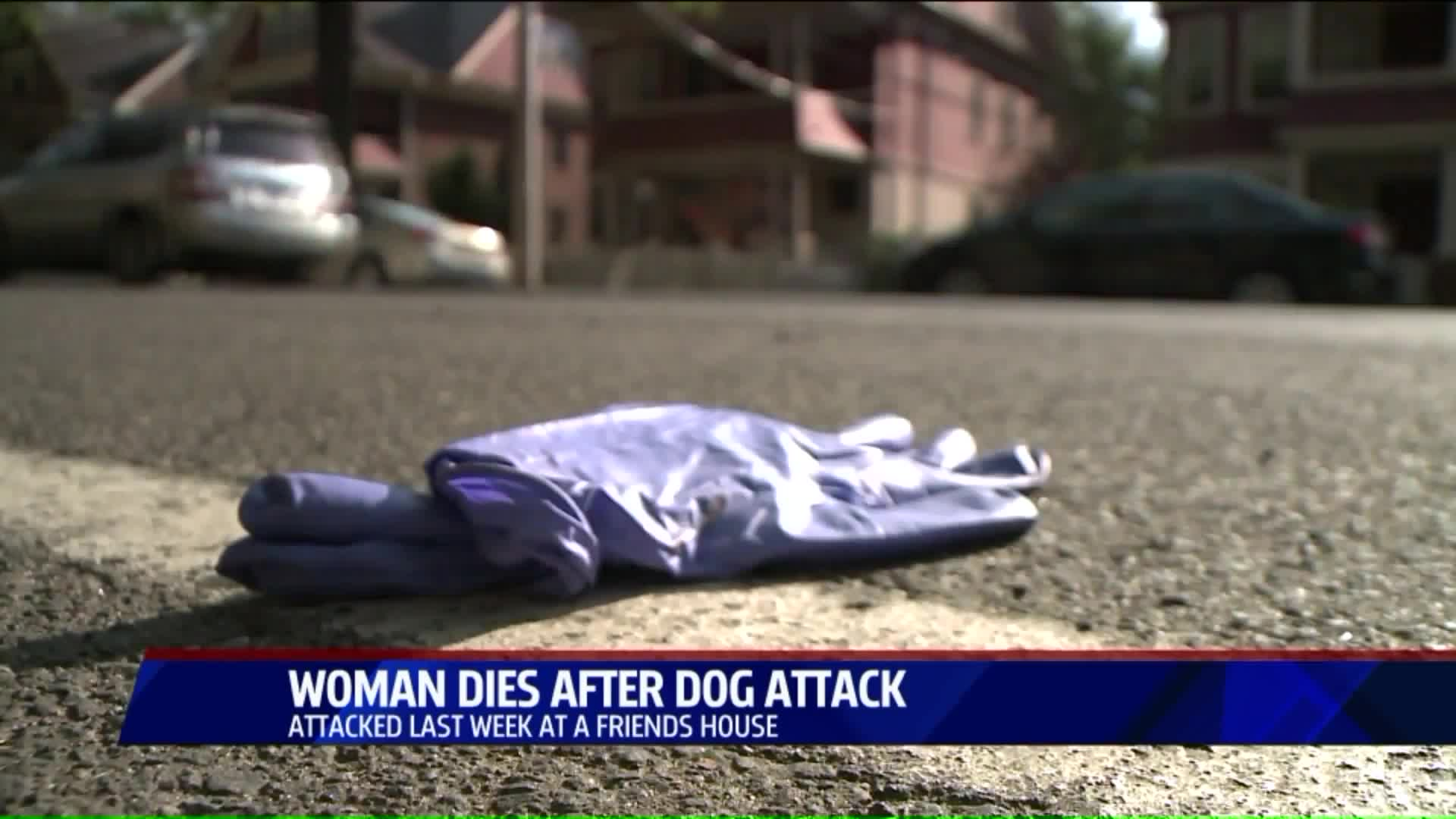 Connecticut Woman Dies After Horrific Dog Attack