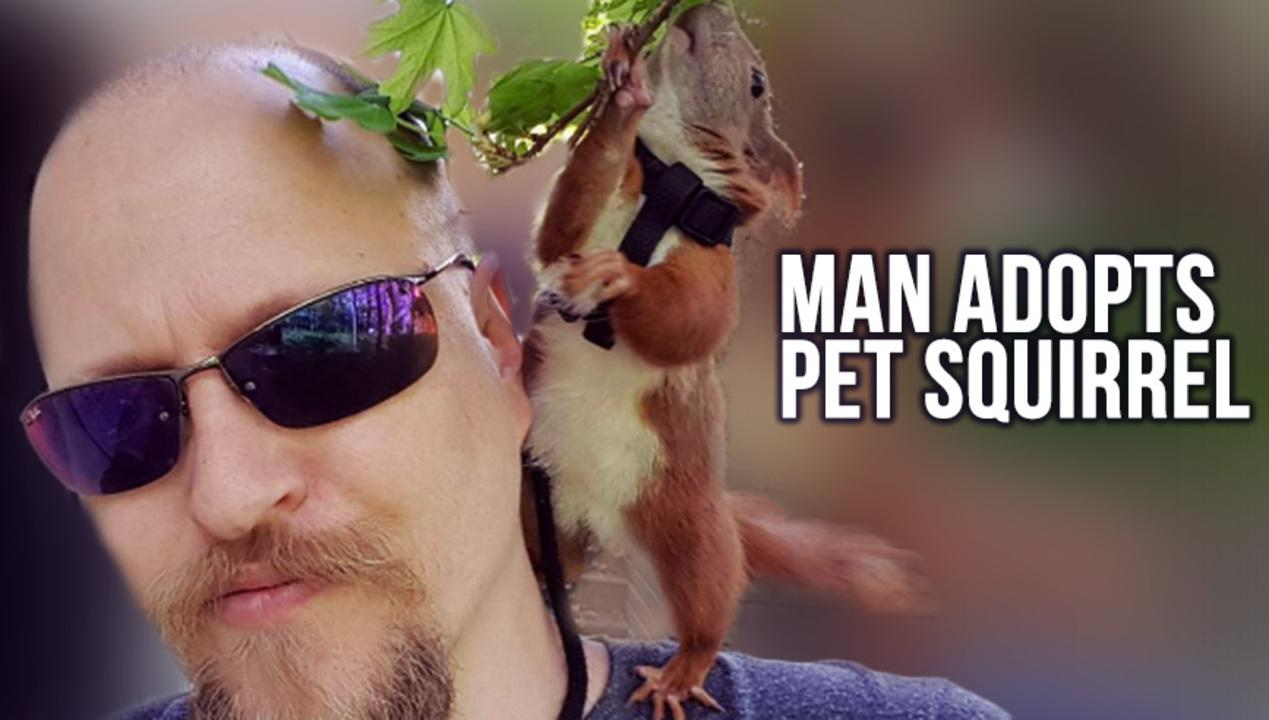 Man Rescues Squirrel, Finds New BFF