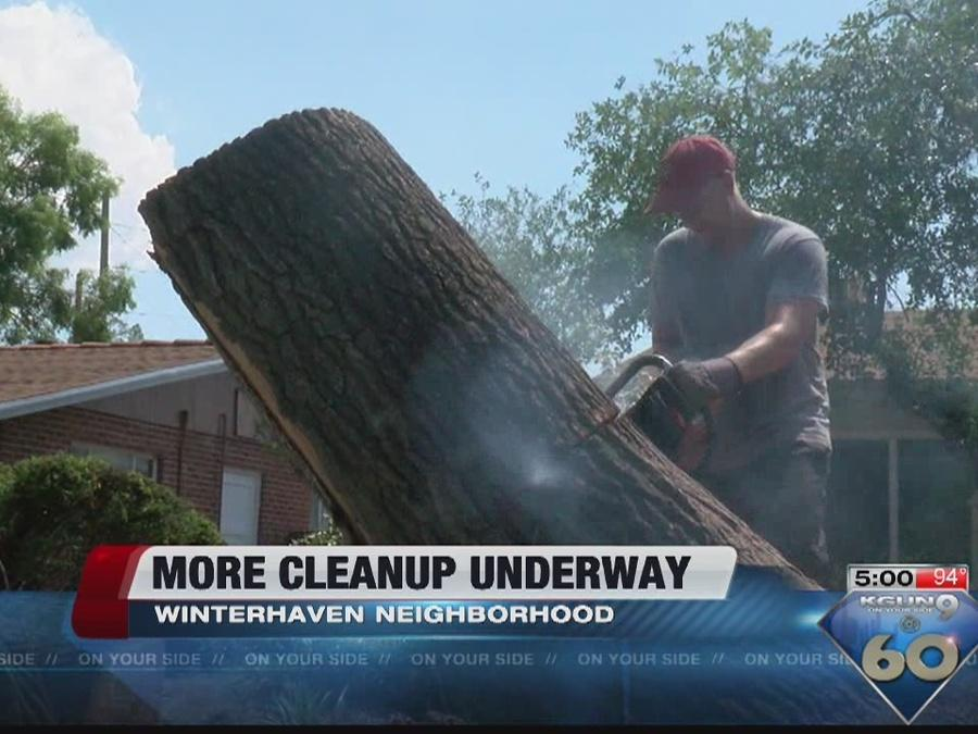 TIMBER! Tree cleaning service estimates between $4-6,000 to remove fallen tree