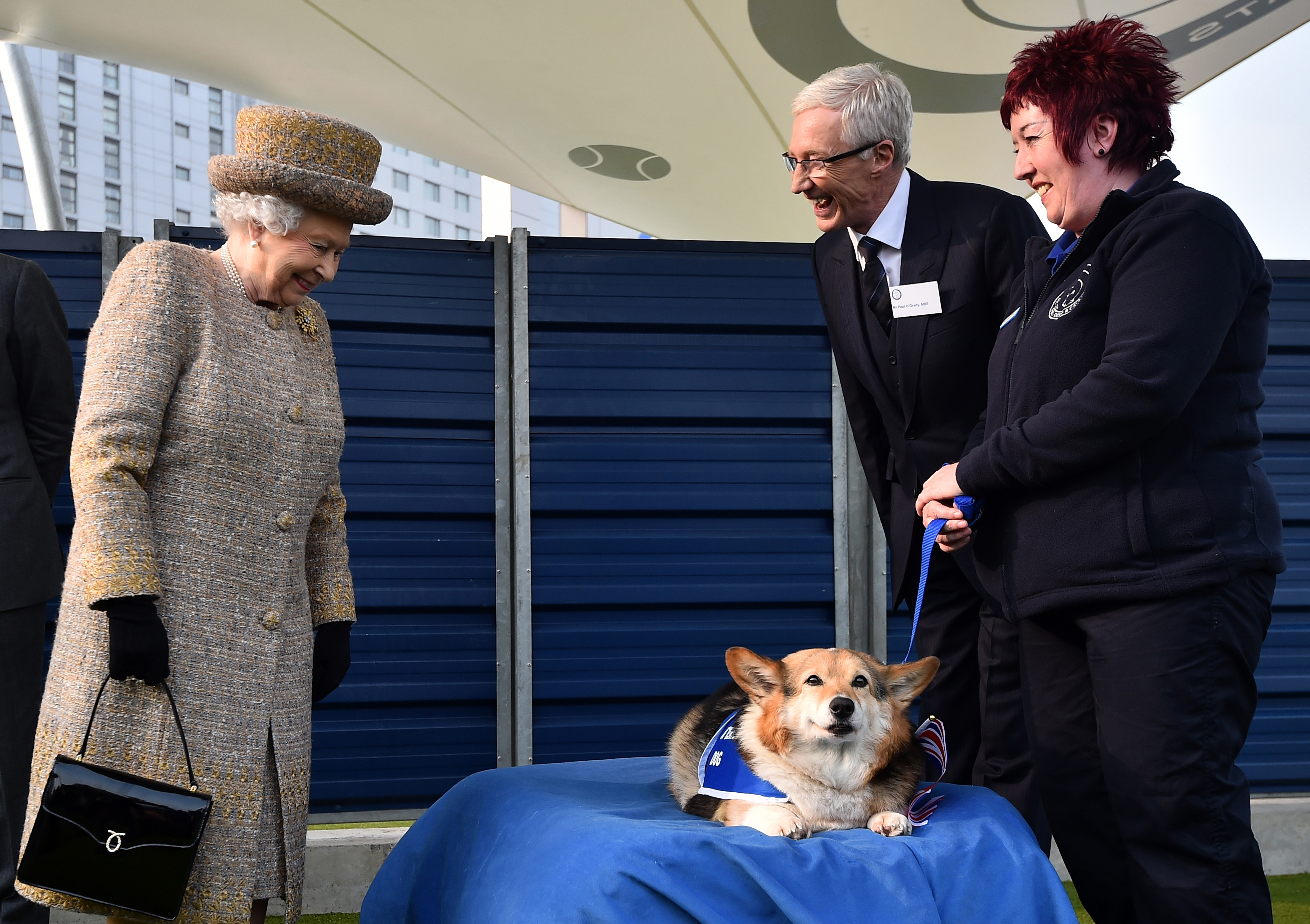 80 Years of Queen Elizabeth's Royal Corgis