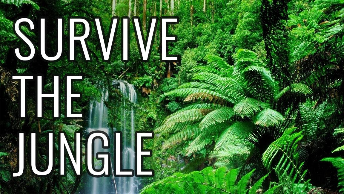 how to survive in the jungle How long would you survive in a thick jungle 5 comments you are an explorer and you go to a very deep dark jungle to explore you find yourself stranded there, sad and alone.