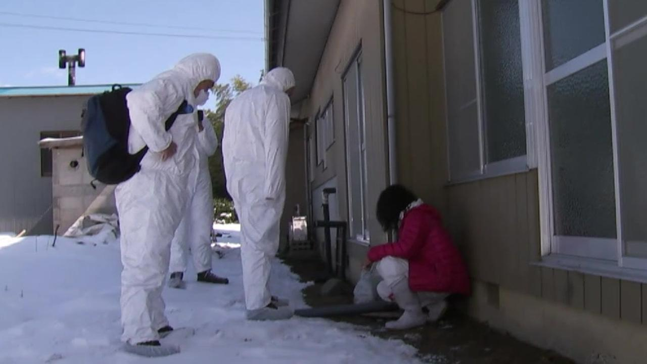 People Allowed to Return After Fukushima Disaster