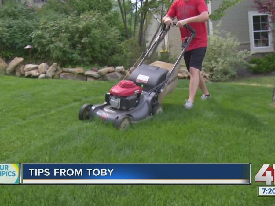Tips from Toby: Tips to keep your yard healthy in July