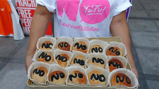 Thai Dissidents Campaign Against Draft Charter