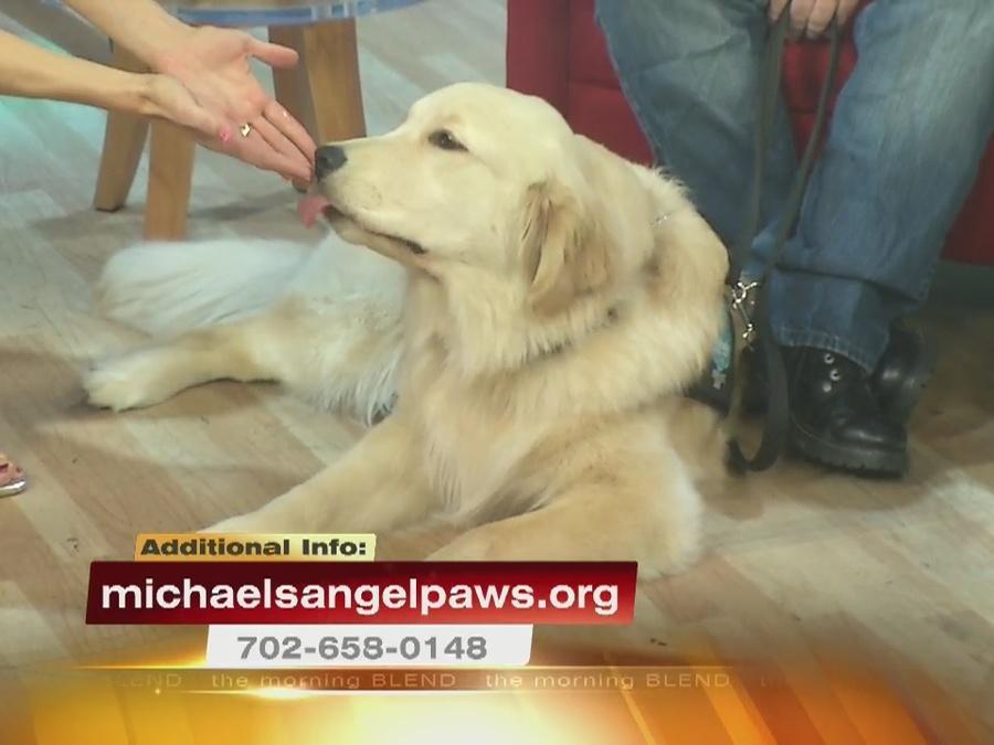 Michael's Angel Paws 8/29/16