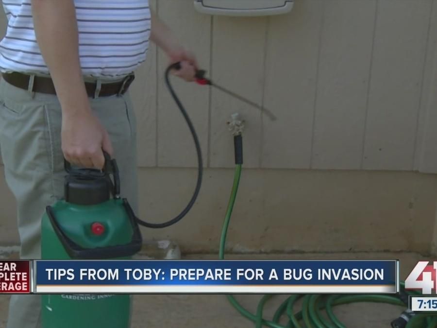 Tips from Toby: Prepare for a bug invasion