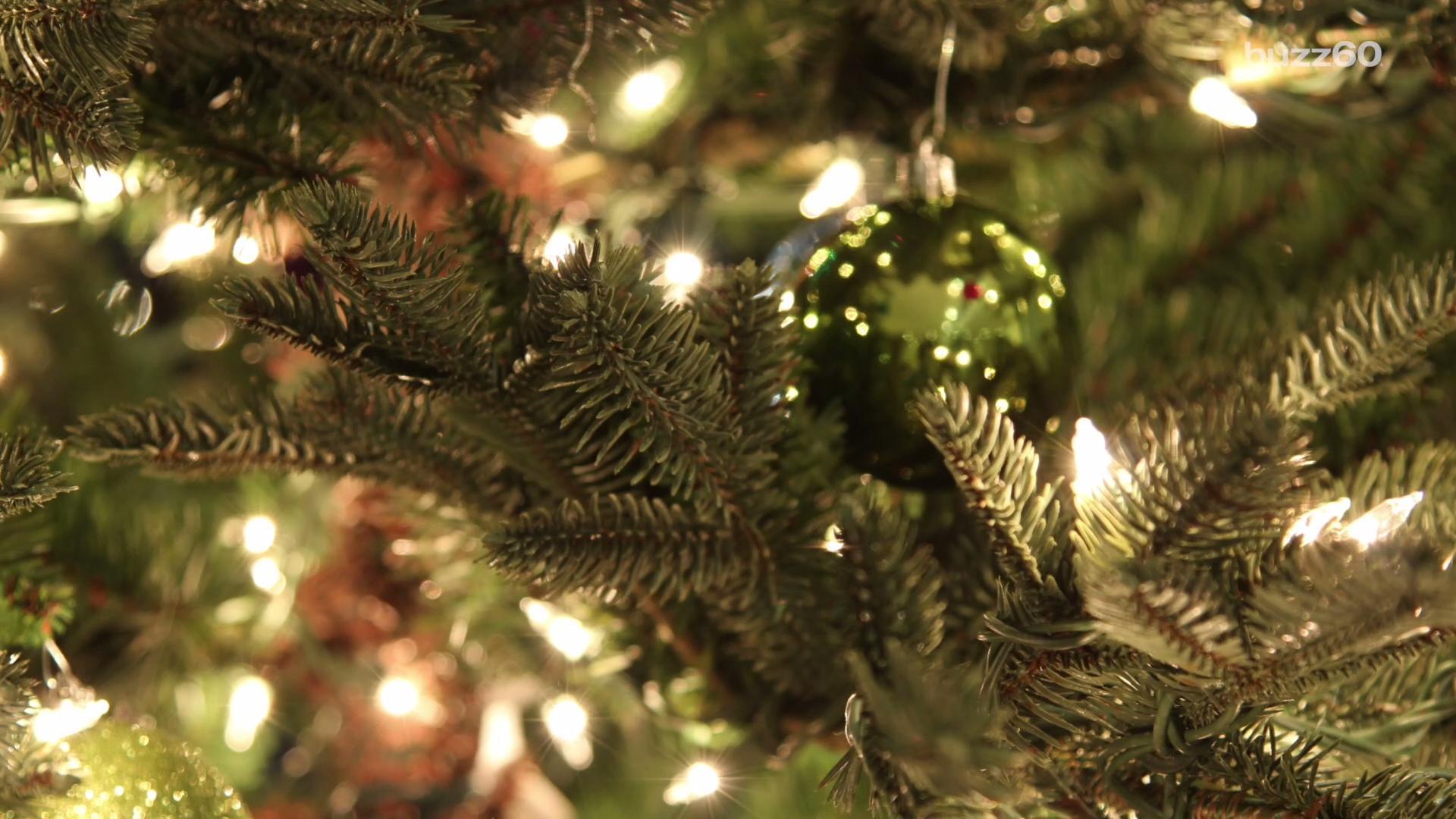 Christmas Tree Make Last Longer : S