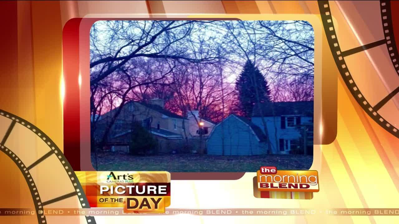 Art's Cameras Plus Picture of the Day for February 20!