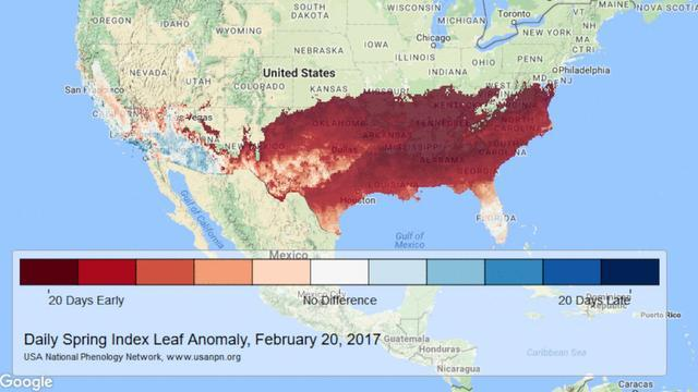 Weather Experts Say Signs Of Early Spring May Not Be A Good Thing
