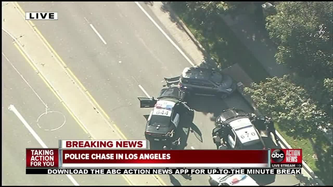 Police chase in Los Angeles
