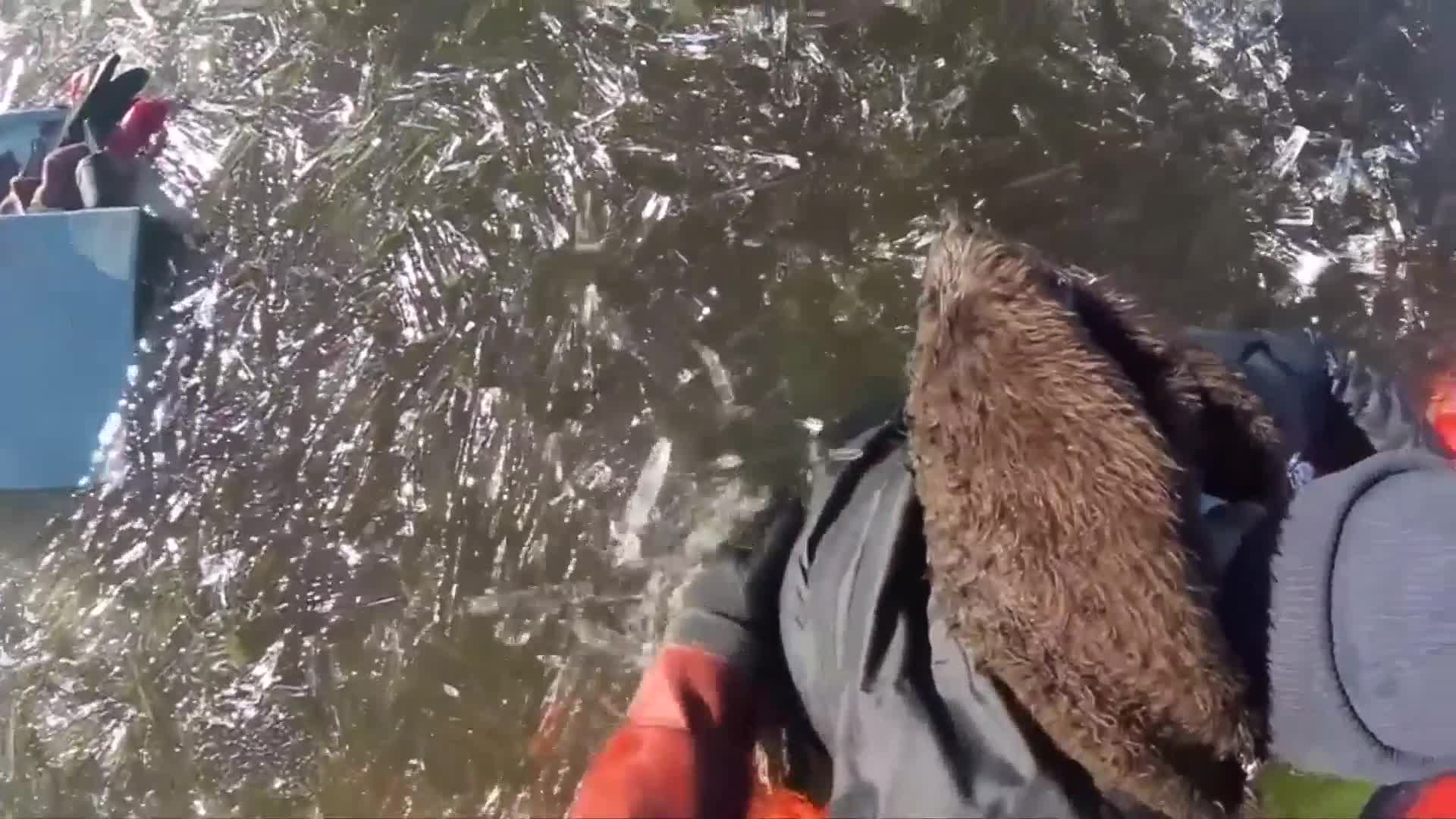 Estonia's emergency services rescue a fisherman trapped in a frozen lake