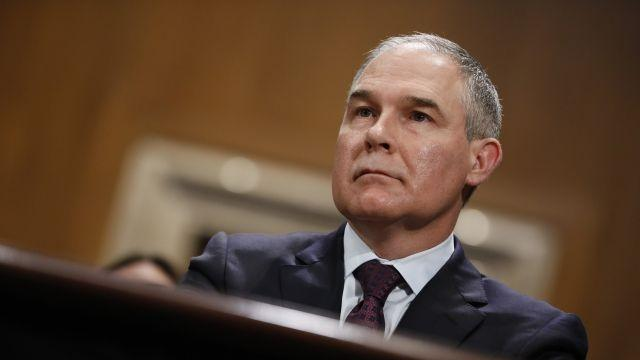 EPA Head Says No to Ban on Pesticide Linked to Health Issues