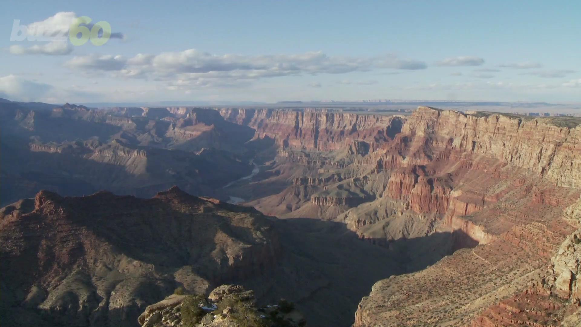 Man Sues Grand Canyon for Not Letting Him Study Its Rocks