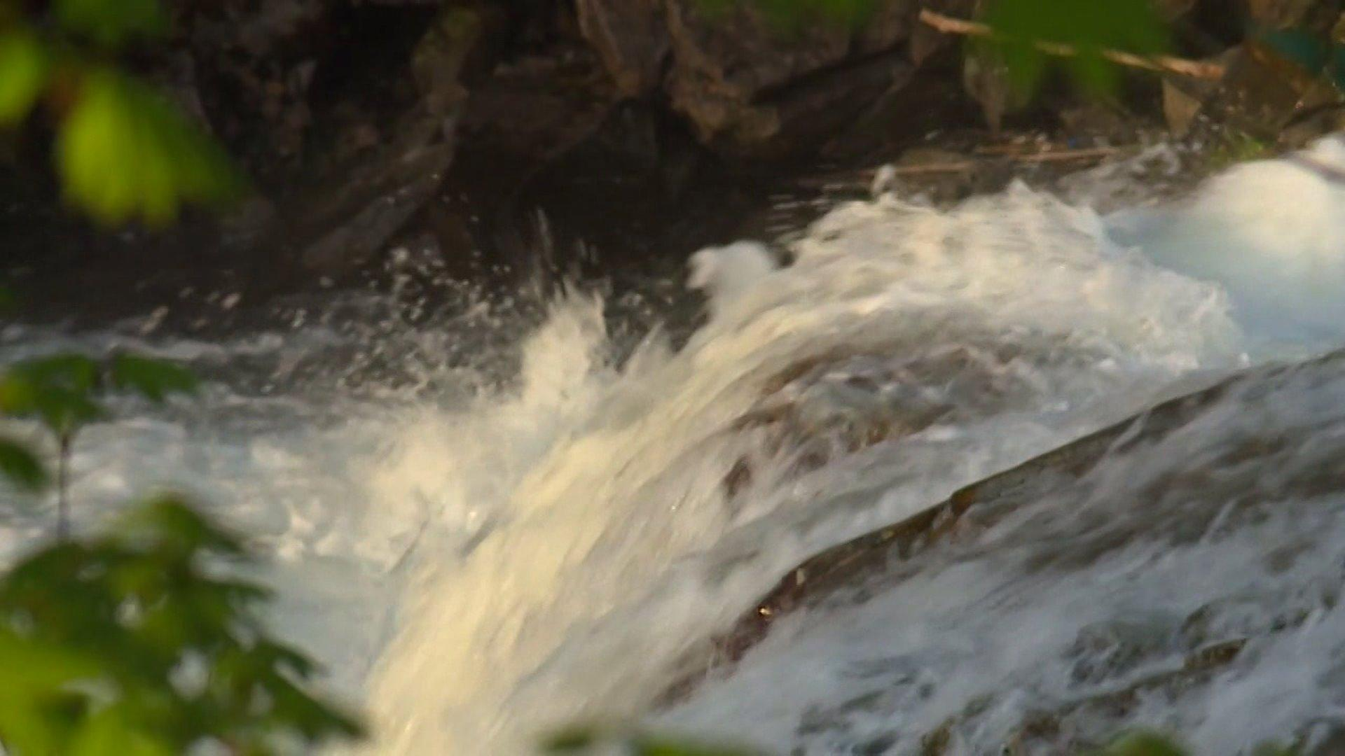 Teenage Boy Presumed Drowned After Going Over Falls in Washington State River
