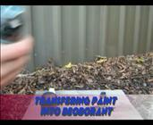 Deodorant Spray Paint